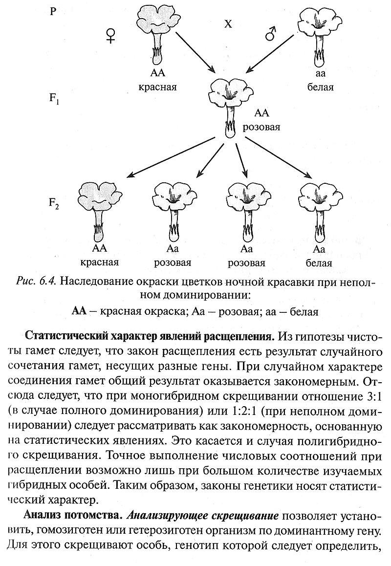 Генетика и селекция