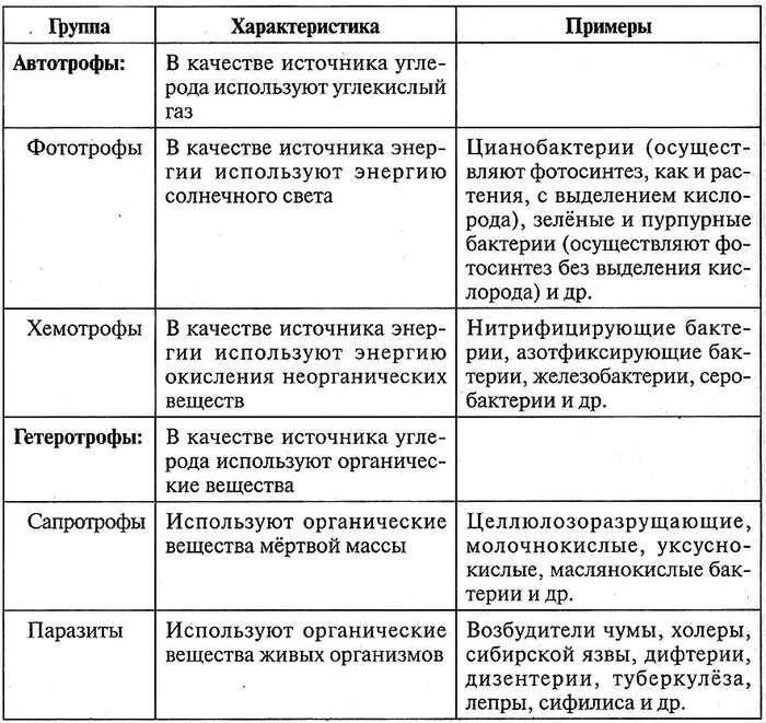 Классификация бактерий по типам питания