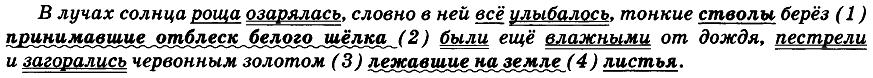ЕГЭ по русскому языку. Задание 17