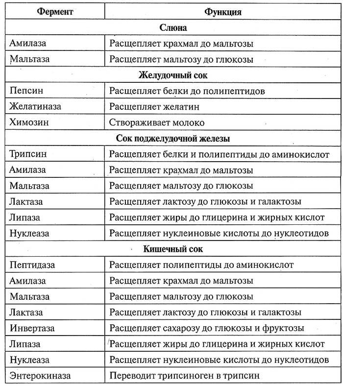 Таблица 12.12. Роль ферментов в пищеварении