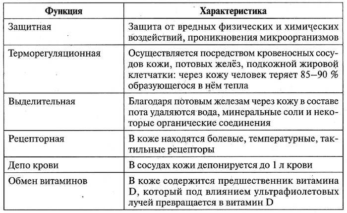 Таблица 12.23. Функции кожи