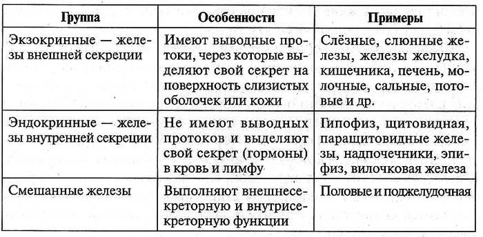 Таблица 12.24. Железы