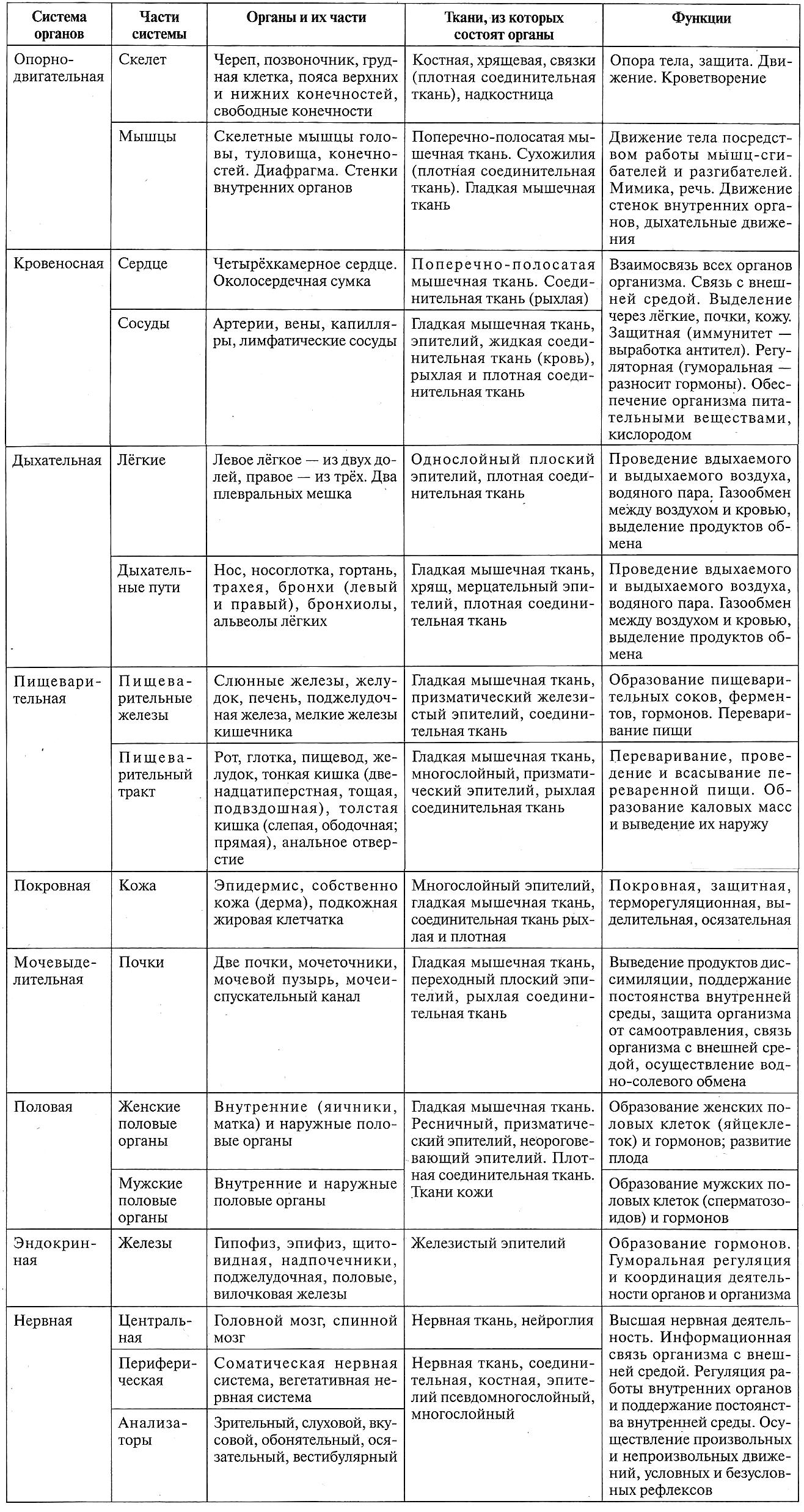 Таблица 12.3. Системы органов человека