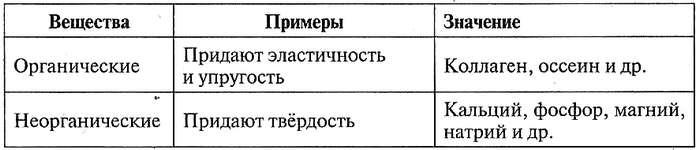 Таблица 12.5. Органические и неорганические вещества костей